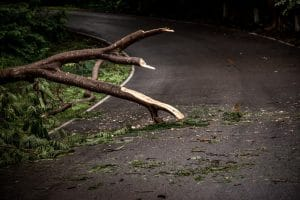 Why Drivers Need to Be Extremely Careful Around Storm Debris
